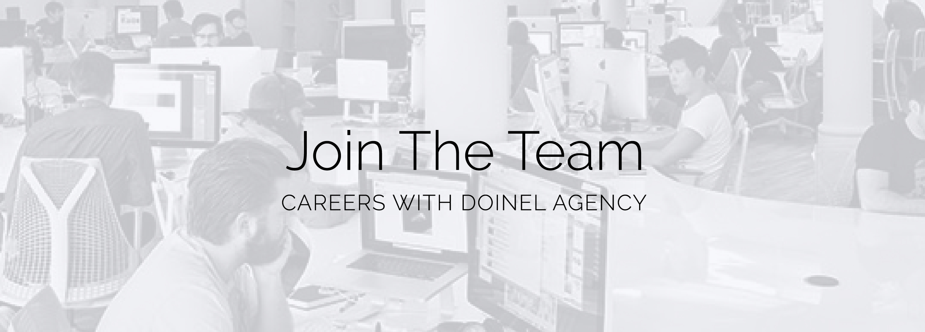 The Doinel Agency